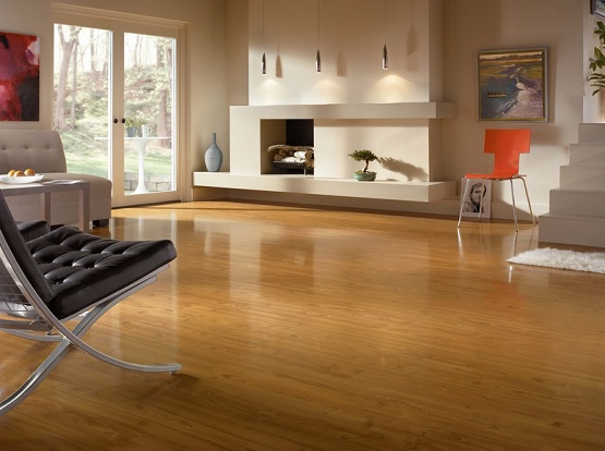 Contemporary room with light cherry laminate flooring