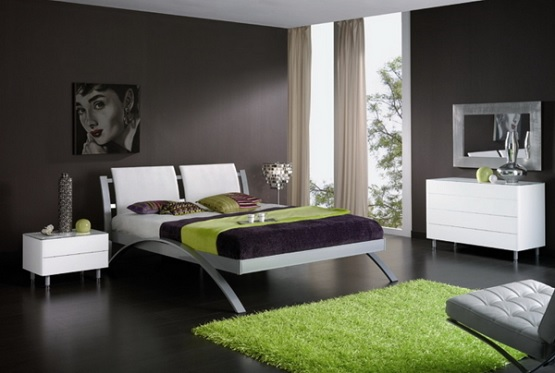 Elegant bedroom with black wood floor colors