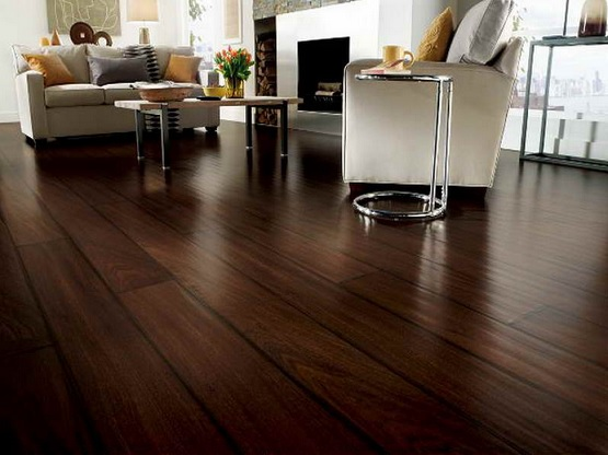 Dark linoleum plank flooring living room