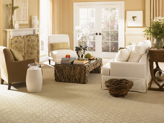 Best flooring for living room with patterned carpet