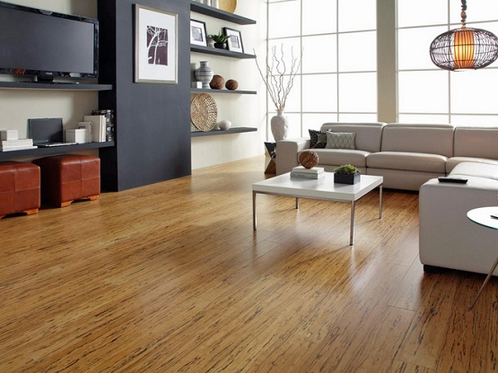 Synthetic Wood Flooring For Small Contemporary Living Room Style